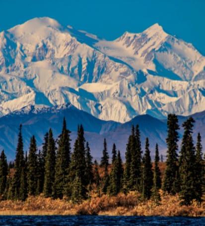 Danali Alaska Probate