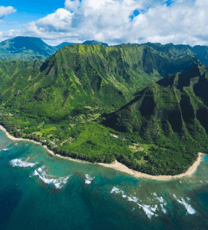 Hawaii Probate