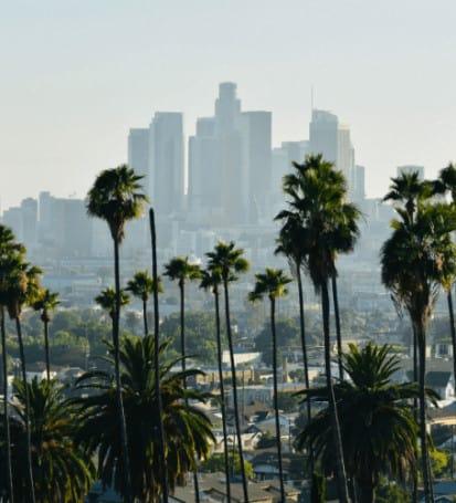 Los Angeles California Probate